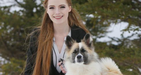 ISIC-webinar over rasstandaard IJslandse hond